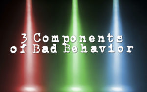 3-components-of-bad-behavior
