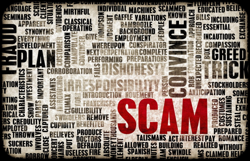 IRS taxpayer information is ripe for fraud?